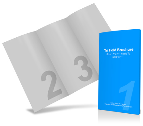 17 x 11 Tri Fold Brochure Cover Actions